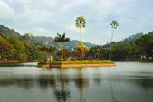 Island in Kandy lake, Sri Lanka — Stock Photo