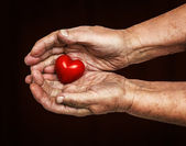 Elderly woman keeping red heart in her palms — Stock Photo