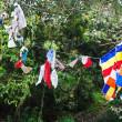 Prayer flags on tree near Buddhist monastery — Stock Photo