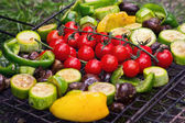Fresh vegetables for grilling outdoors — Stock Photo