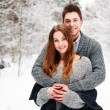 Winter portrait of happy couple. - Foto de Stock