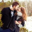 Stock Photo: Couple in love in the cold spring forest
