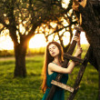 Girl in the apple orchard — Stock Photo #23340374