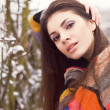 Beautiful woman in winter. - Stock Photo