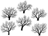 Silhouettes of trees without leaves. — Stock Vector