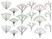 Set of vector different types of inflorescence. — Stock Vector