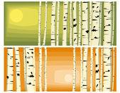 Horizontal illustrations of trunks birches. — Stock Vector