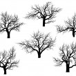 Silhouettes of oak trees without leaves. — Stok Vektör