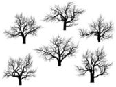 Silhouettes of oak trees without leaves. — Stock Vector