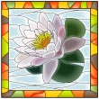 Vector illustration of flower white water lily. — Stock Vector