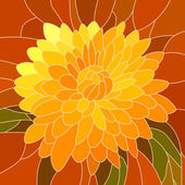 Vector illustration of flower yellow chrysanthemum. — Stock Vector