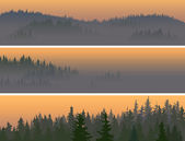Horizontal banners of misty coniferous wood. — Stock Vector