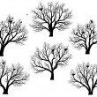 Silhouettes of birds nest in trees without leaves. - Stock Vector