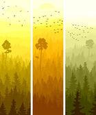 Vertical banners of hills coniferous wood. — Stock Vector