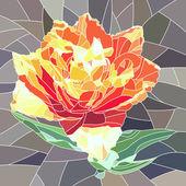Orange tulip vektör çizim. — Stok Vektör
