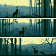 Horizontal banners of wild animals in hills wood. — 图库矢量图片