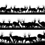 在非洲的 sav 羚羊的水平横幅剪影 — 图库矢量图片 #50720727
