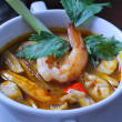A portrait of yummy tomyam - Stock Photo