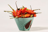 Some small chilies, isolated with white back ground — Stock Photo