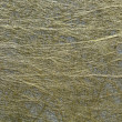 Golden fibre texture — Stock Photo