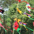 Colors kite — Stock Photo #25096255