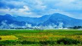 Indonesia Landscape — Stock Photo