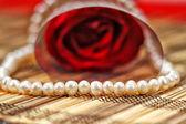 Valentine, — Stock Photo