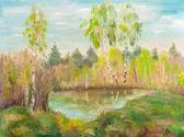Birches naer pond — Stock Photo