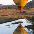 Hot Air Baloon — Stockfoto