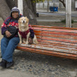 Stock Photo: Mwith dog, PuntArenas, Chile