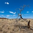 Amazing landscape, Namibia — Stock Photo