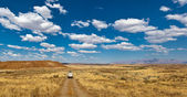 Car on the road, Namibia, Africa — Stock Photo