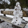 Snowman on park bench - Stockfoto