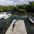 Iguanas on a moor with boats, Galapagos islands — Stock Photo