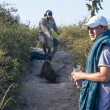 Stock Photo: Dealing with selion on Galapagos islands