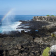 Stock Photo: Galapagos landscape