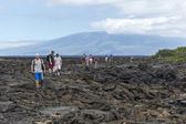 Tourists at Volcanic Beach - Galapagos Islands — Stock Photo