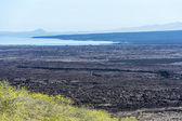 Beautiful panorama of Galapagos islands — Stock Photo
