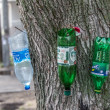 Wash stand from plastic bottles on a tree — Stock Photo