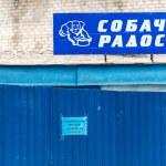 alegria de cães loja Zoo na Rússia — Foto Stock