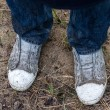 Dirty shoes after trees planting — Foto Stock