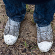 Dirty shoes after trees planting — Stock Photo