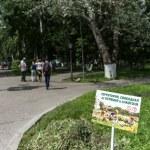 Vologda park, Russia — Stock Photo