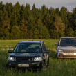 Stock Photo: Suv cars in high grass of russifield