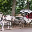 Stock Photo: Touristic horse carriage in Suzdal, Russia
