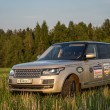 Stock Photo: Suv car in high grass of russifield