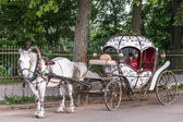 Touristic horse carriage in Suzdal, Russia — Foto de Stock