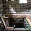 Stock Photo: Entrance into wooden cellar iside russihouse