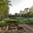 Destroyed park in Pereslavl, Russia — Stockfoto