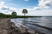 At the Pleshcheevo lake, Yaroslav region, Russia — Stock Photo